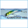 ARTIFICIALE SEASPIN COIXEDDA 100 16GR COLORE ARB PESCA SPINNING SPIGOLA SEA BASS